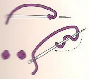 Basic Embroidery Stitch-6